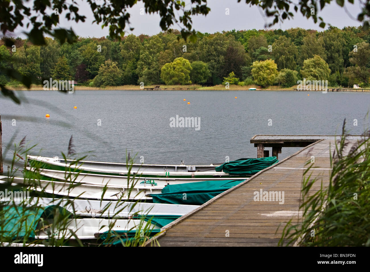 Rowing boats at Ihlsee, Schleswig-Holstein, Germany - Stock Image
