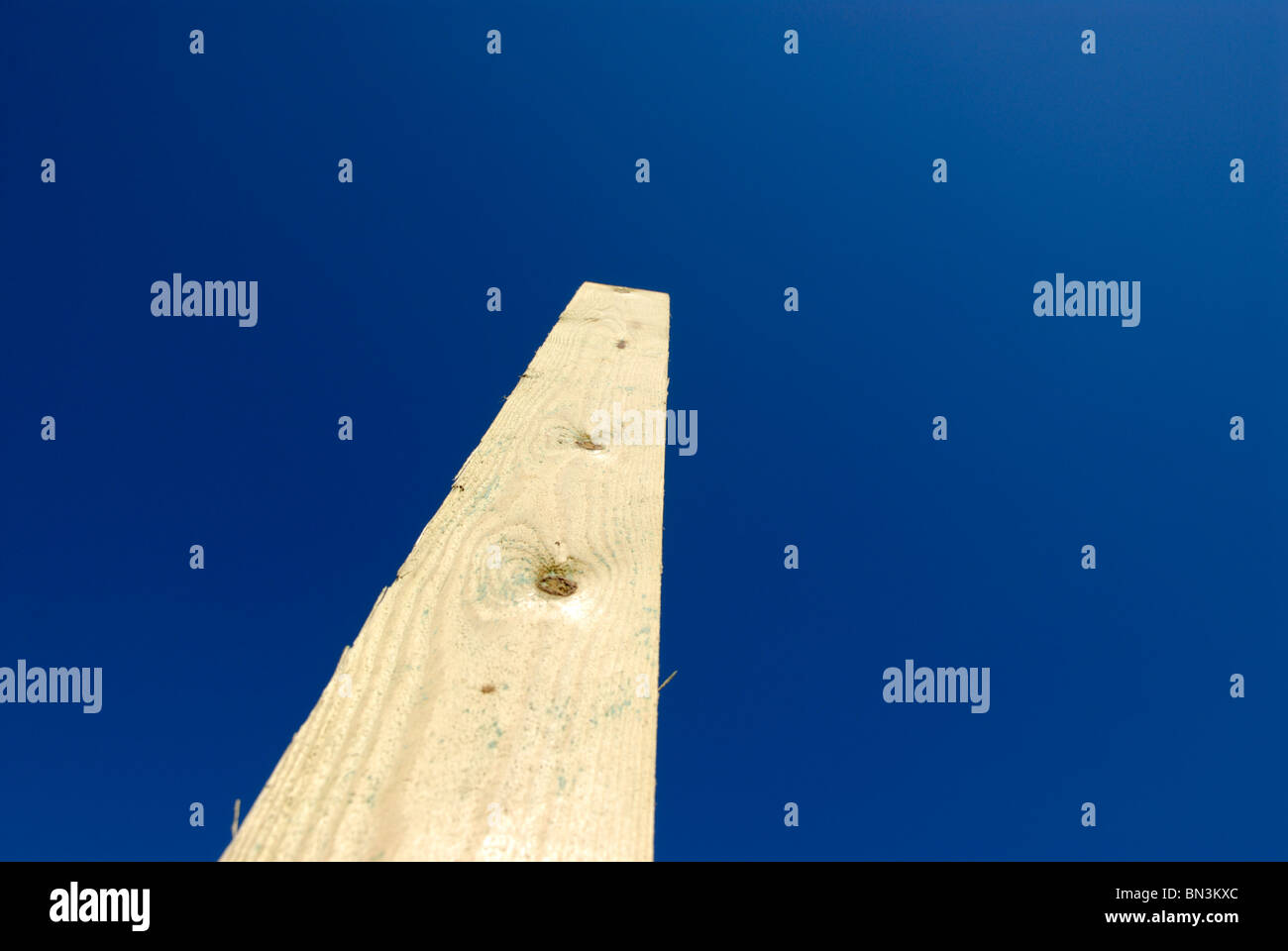 PLANK - Stock Image