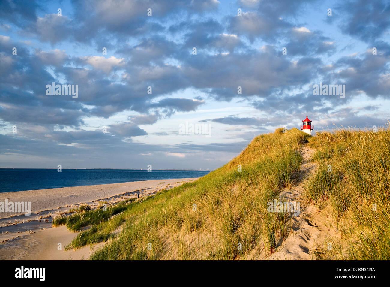 Dunes at a coast, lighthouse List-Ost in the background, Ellenbogen, Sylt, Germany - Stock Image