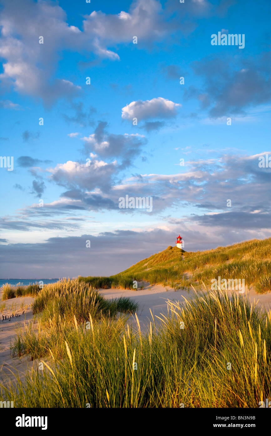 Beach and dunes, lighthouse List-Ost in the background, Ellenbogen, Sylt, Germany - Stock Image