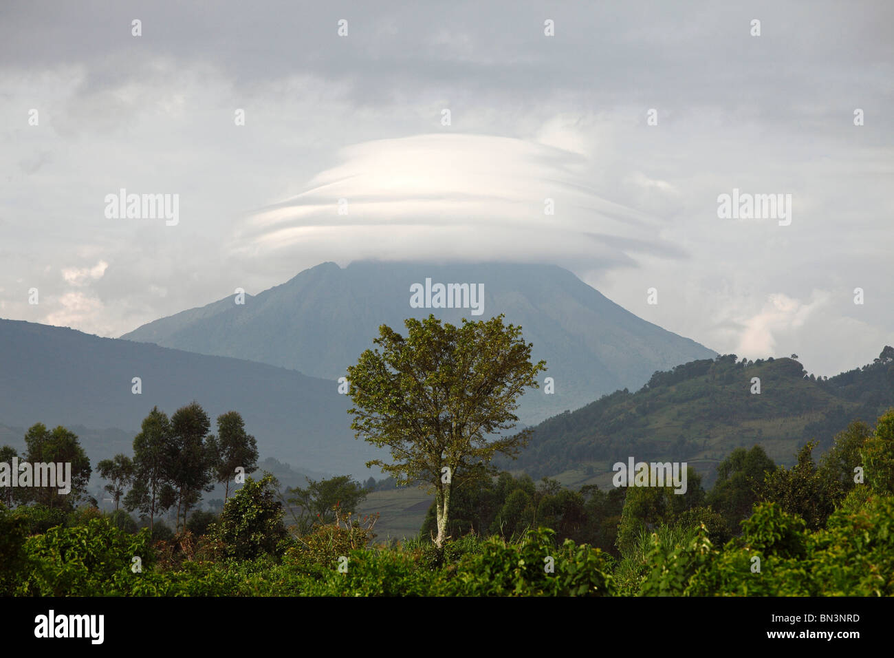 Virunga Volcanoes, Uganda, East Africa, Africa - Stock Image