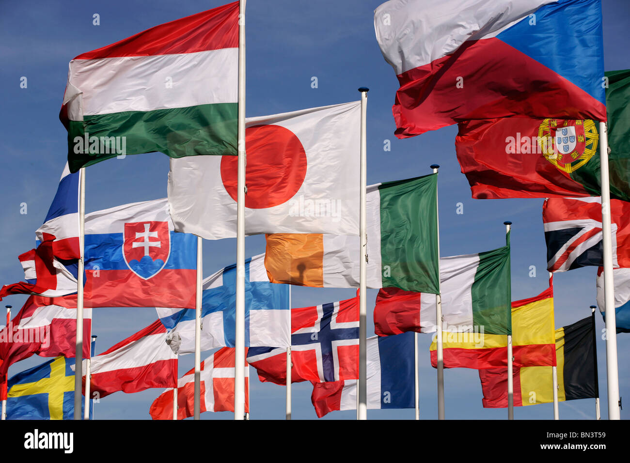 National flags fluttering against sky - Stock Image