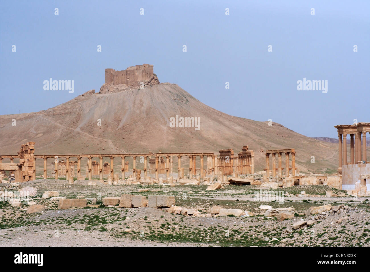 Remains of ancient city of Palmyra in Syria. On the hill top is the Fakhreddin Almaani castle. - Stock Image