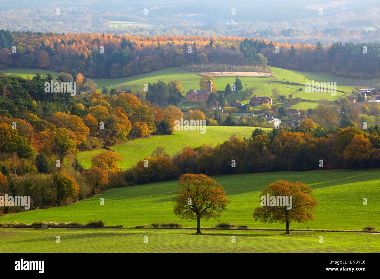 View toward the village of Albury, Newlands Corner - Stock Image