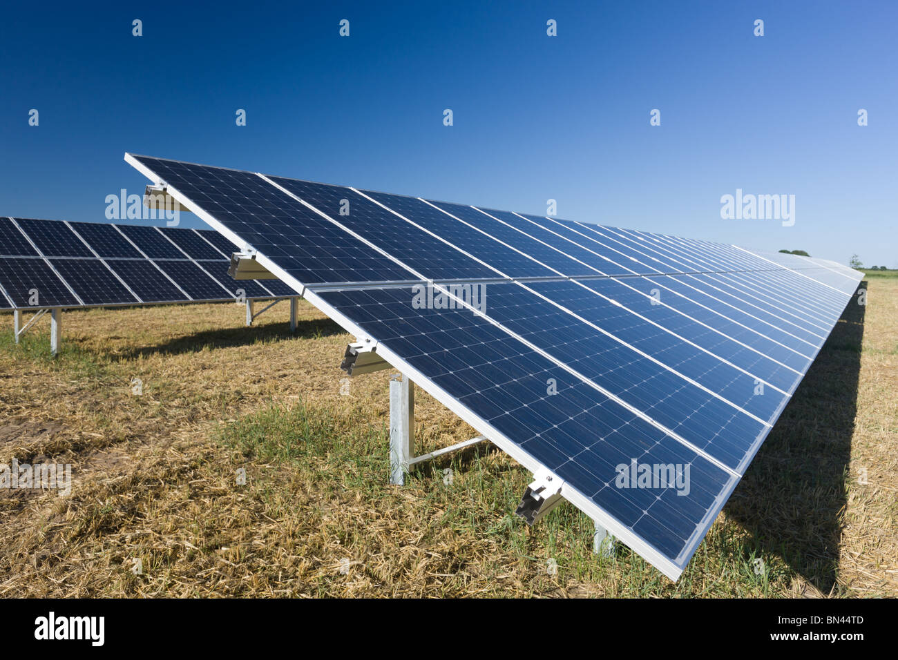 Photo voltaic modules in a solar farm - Stock Image