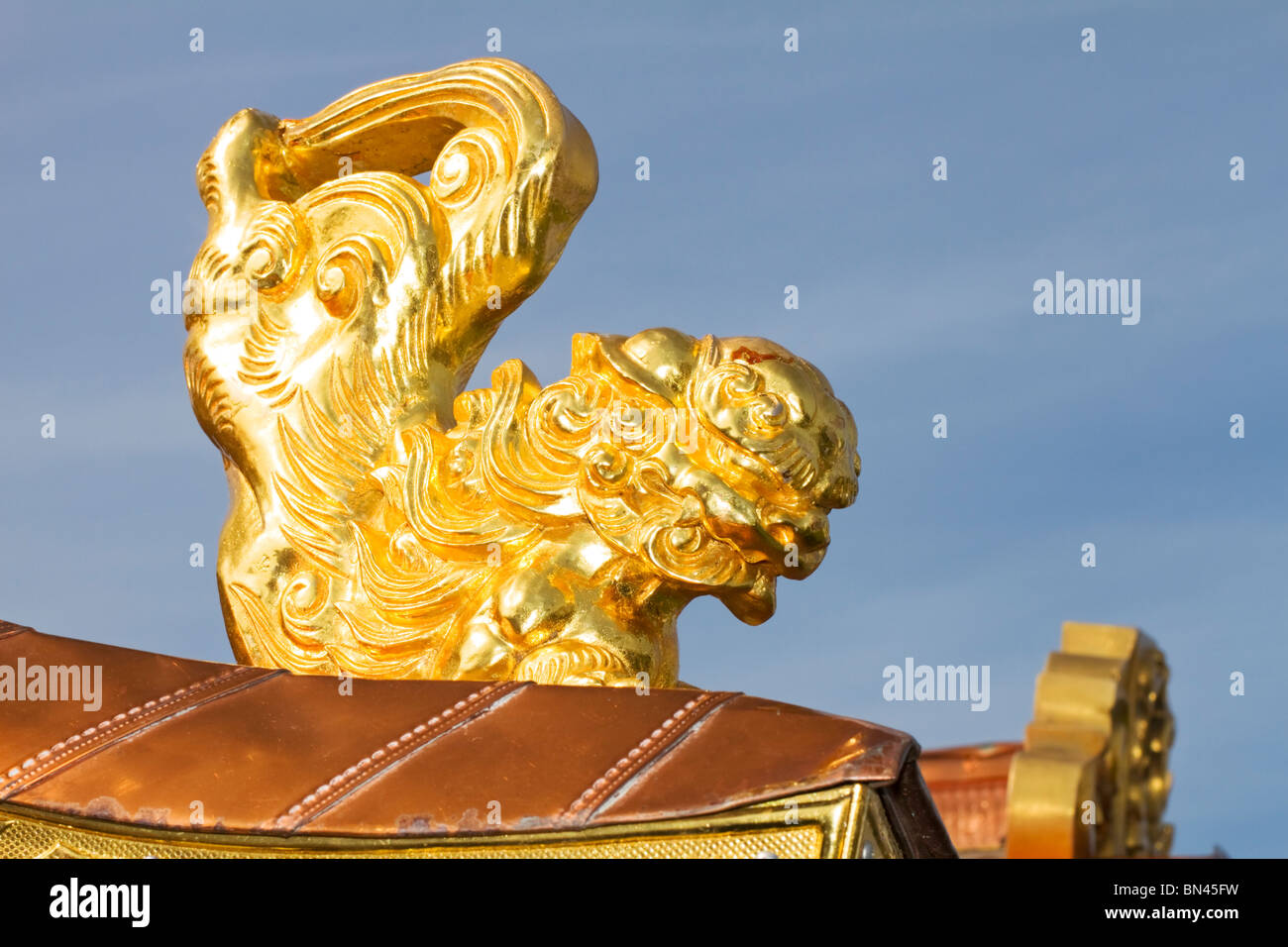 Golden Chinese lion on an Asian funeral hearse - Stock Image