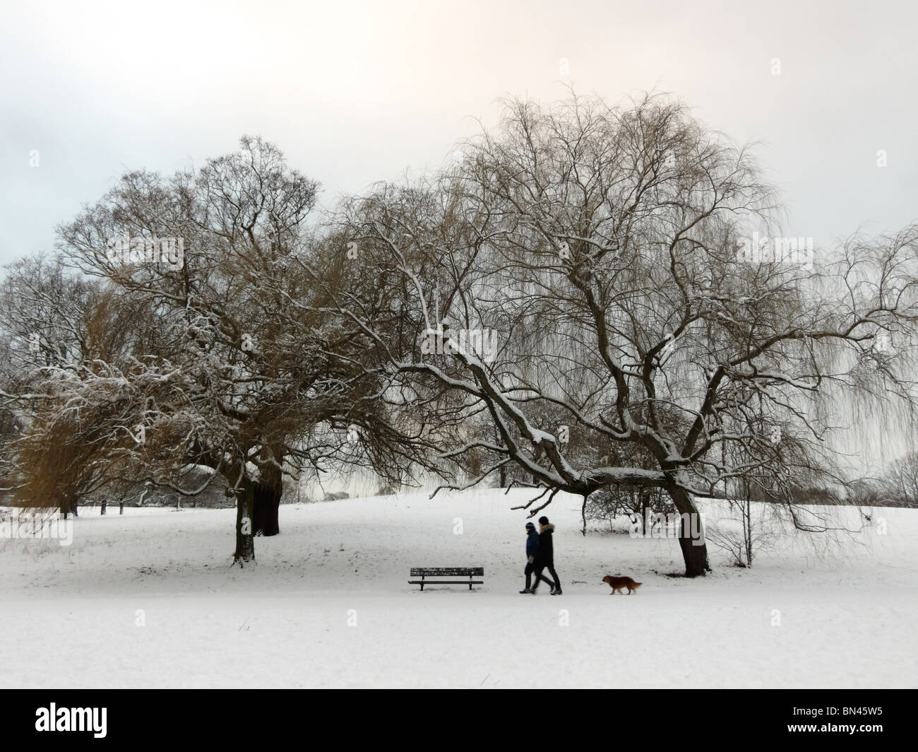 Snow and ice in Winter on Hampstead Heath ponds in London England UK - Stock Image