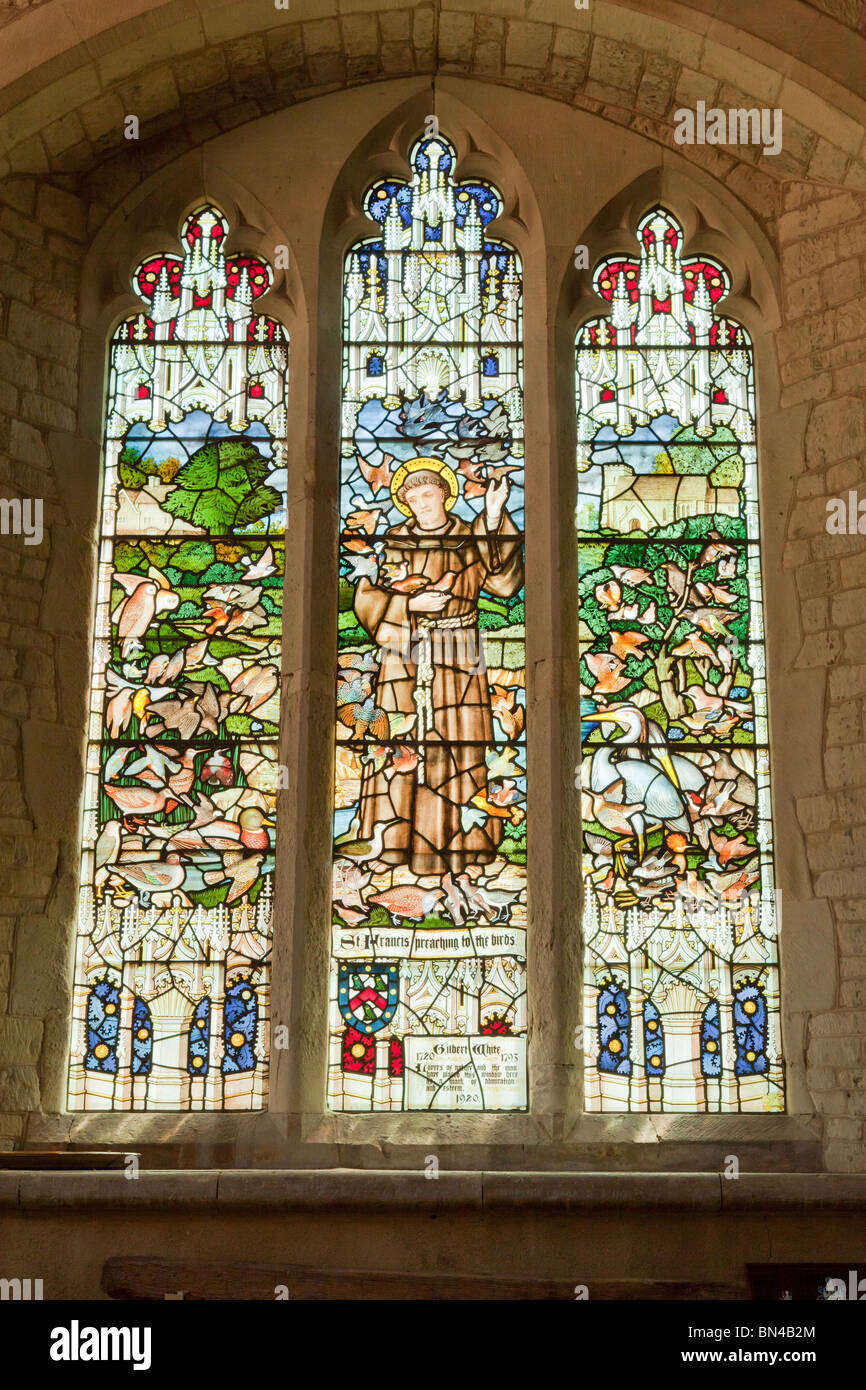 Stained glass window to St Francis in the church of St Mary in Selborne Stock Photo