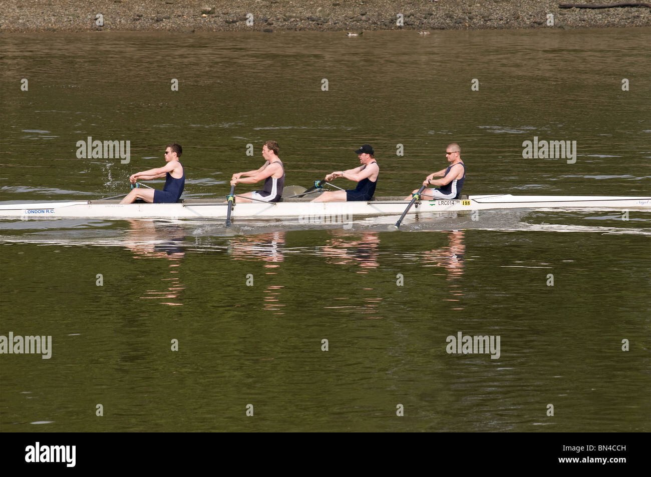 Rowing on the Thames at Hammersmith, London, United Kingdom - Stock Image