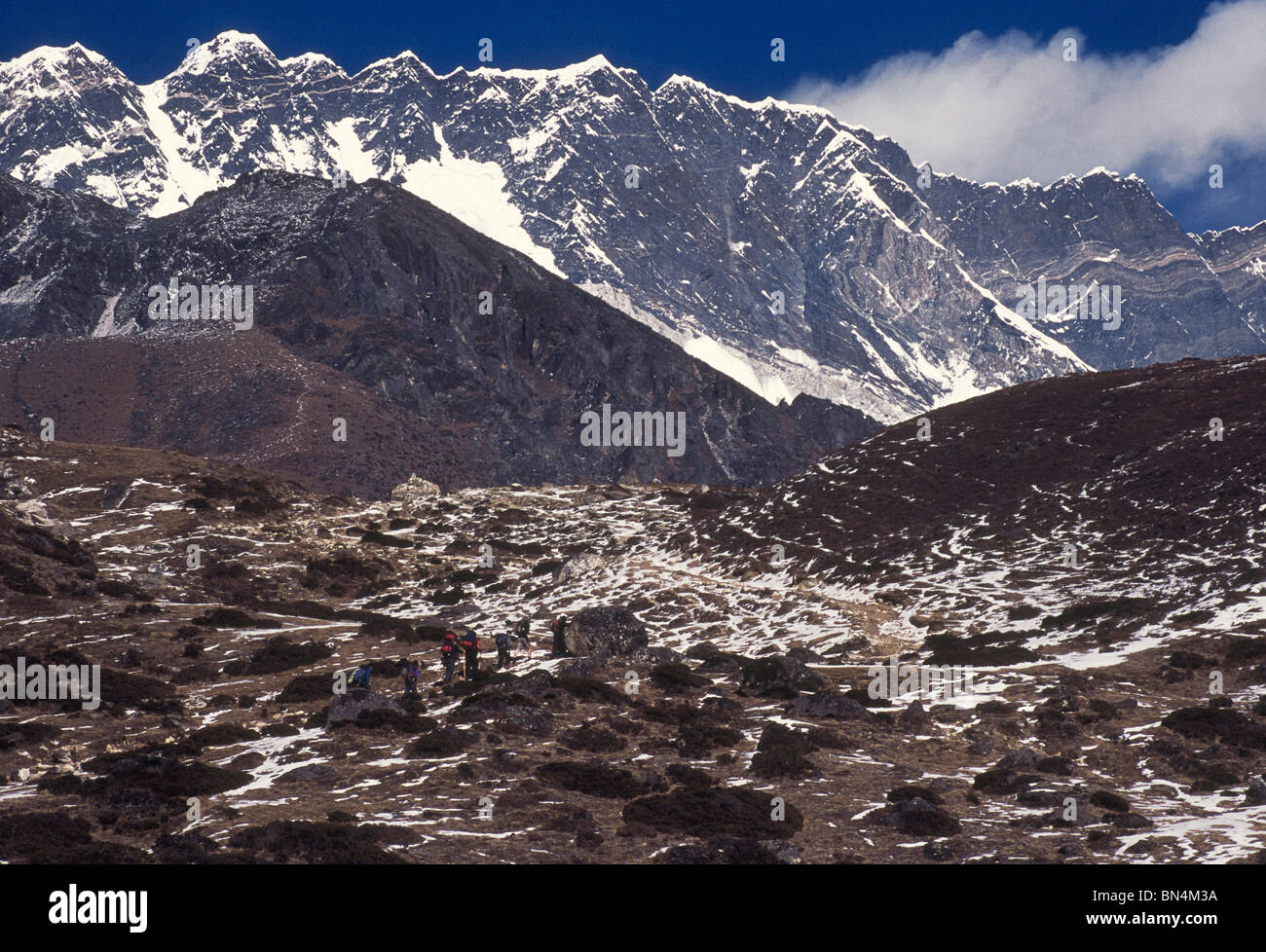 The massive wall of Lhotse; Everest's neighbor as seen from the valley of the Imja Khola; Chukung; Nepal - Stock Image