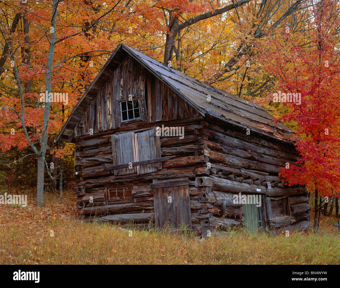 Vilas County Wi Weathered Log Barn Surrounded By The