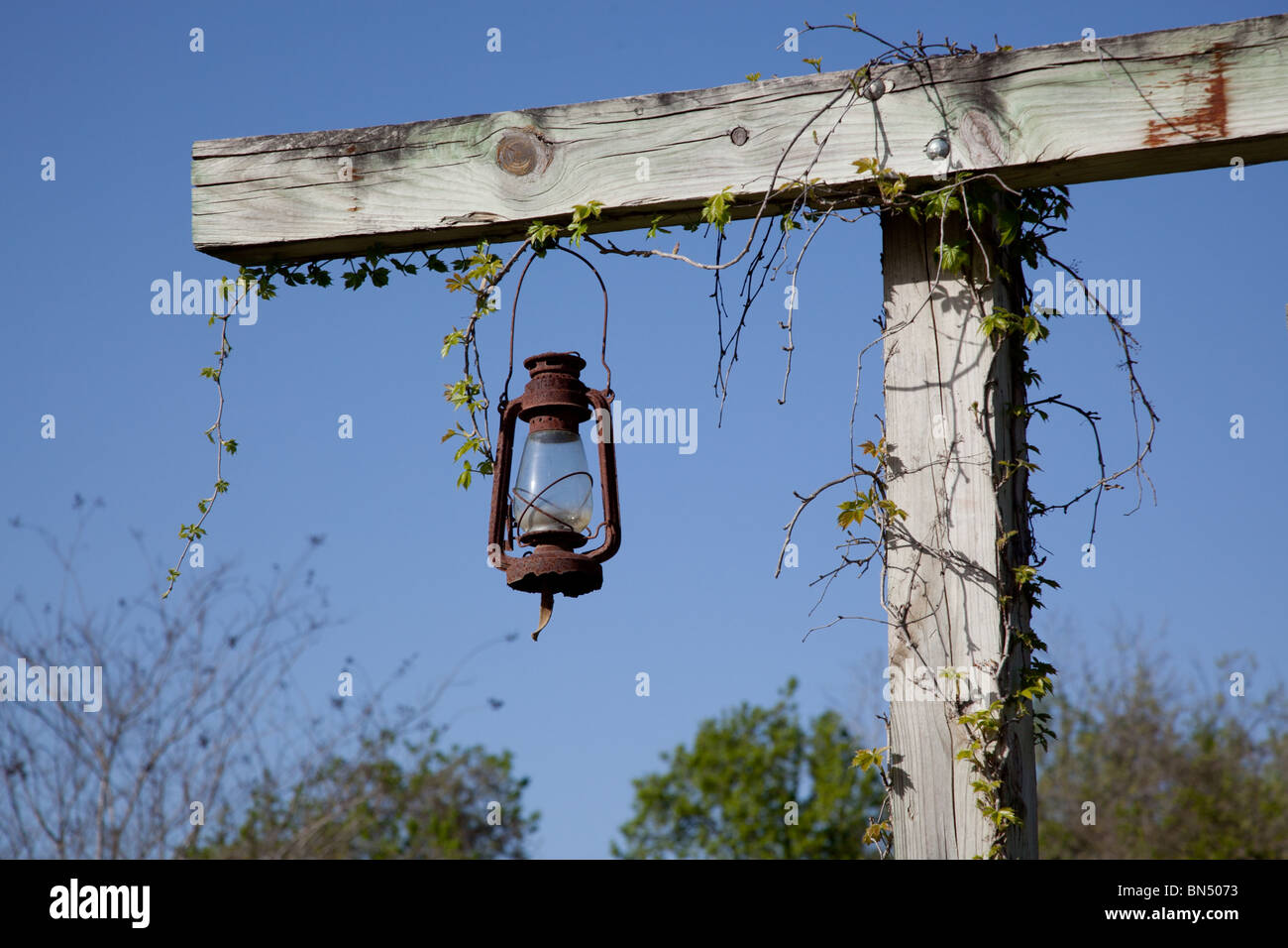 An old style oil lamp hangs from a vine covered wooden post on a Texas Ranch - Stock Image