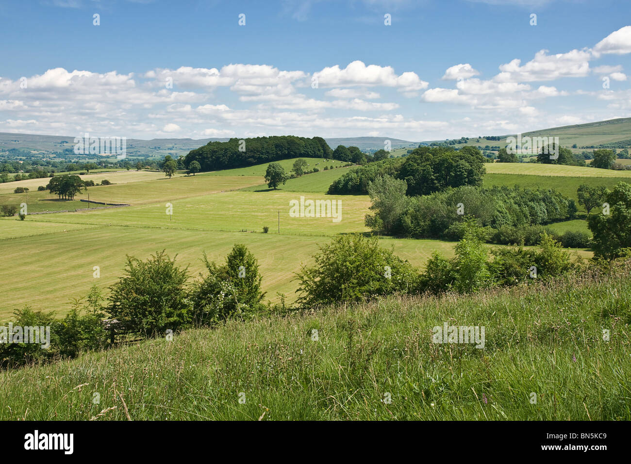 Farmland near Sedbergh in the Upper Eden valley, Cumbria. The picture shows grassland after cutting for silage. - Stock Image