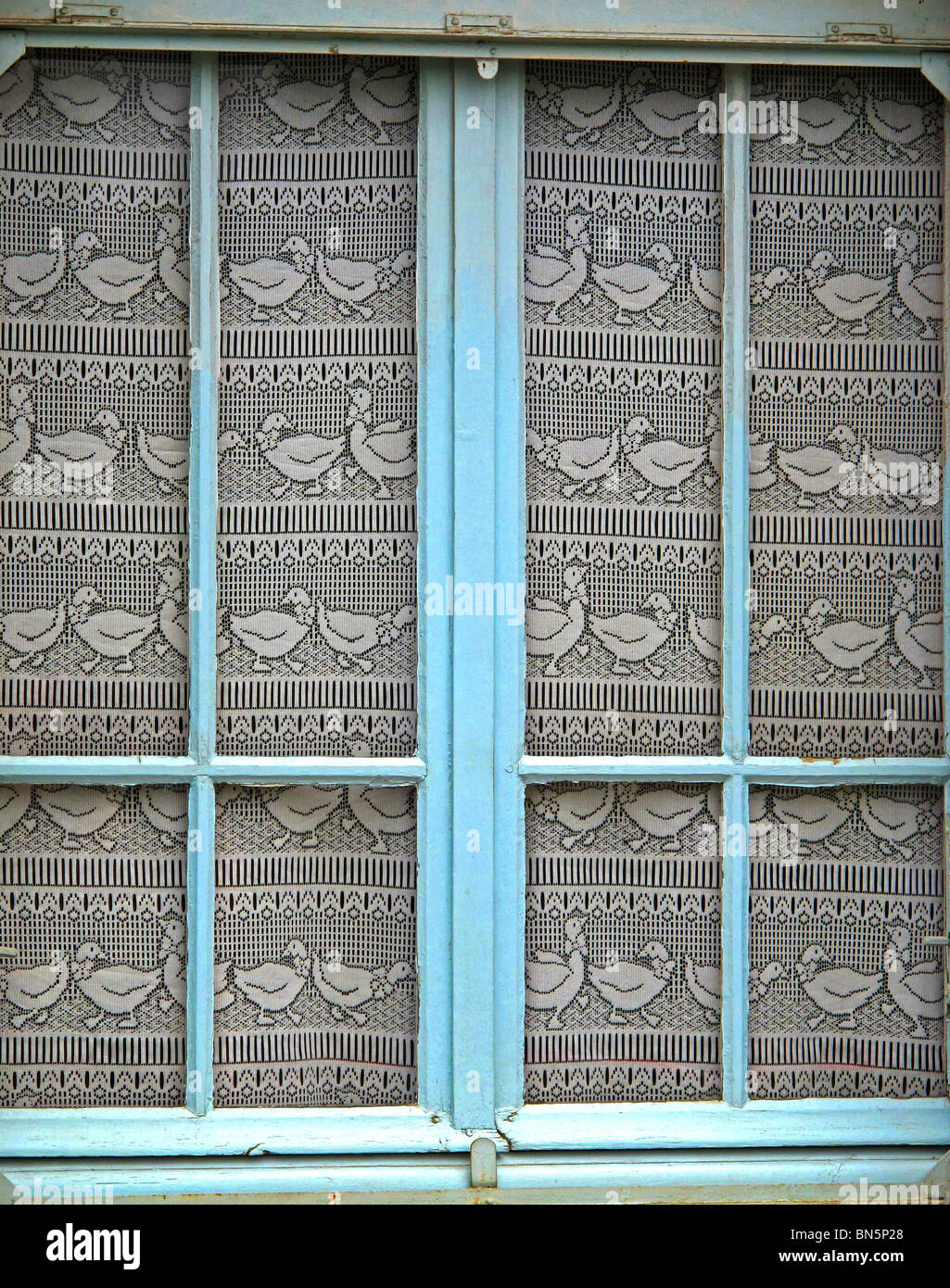 Geese net curtains-found in the Foie gras area of France. - Stock Image