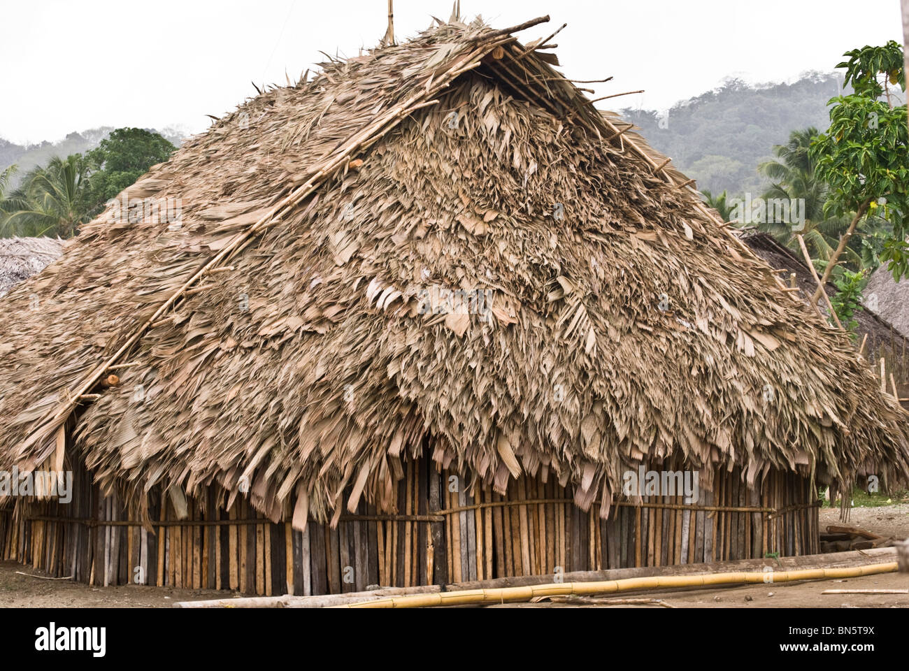 Close Up Of A Local Kuna House With Its Thatch Roof Of