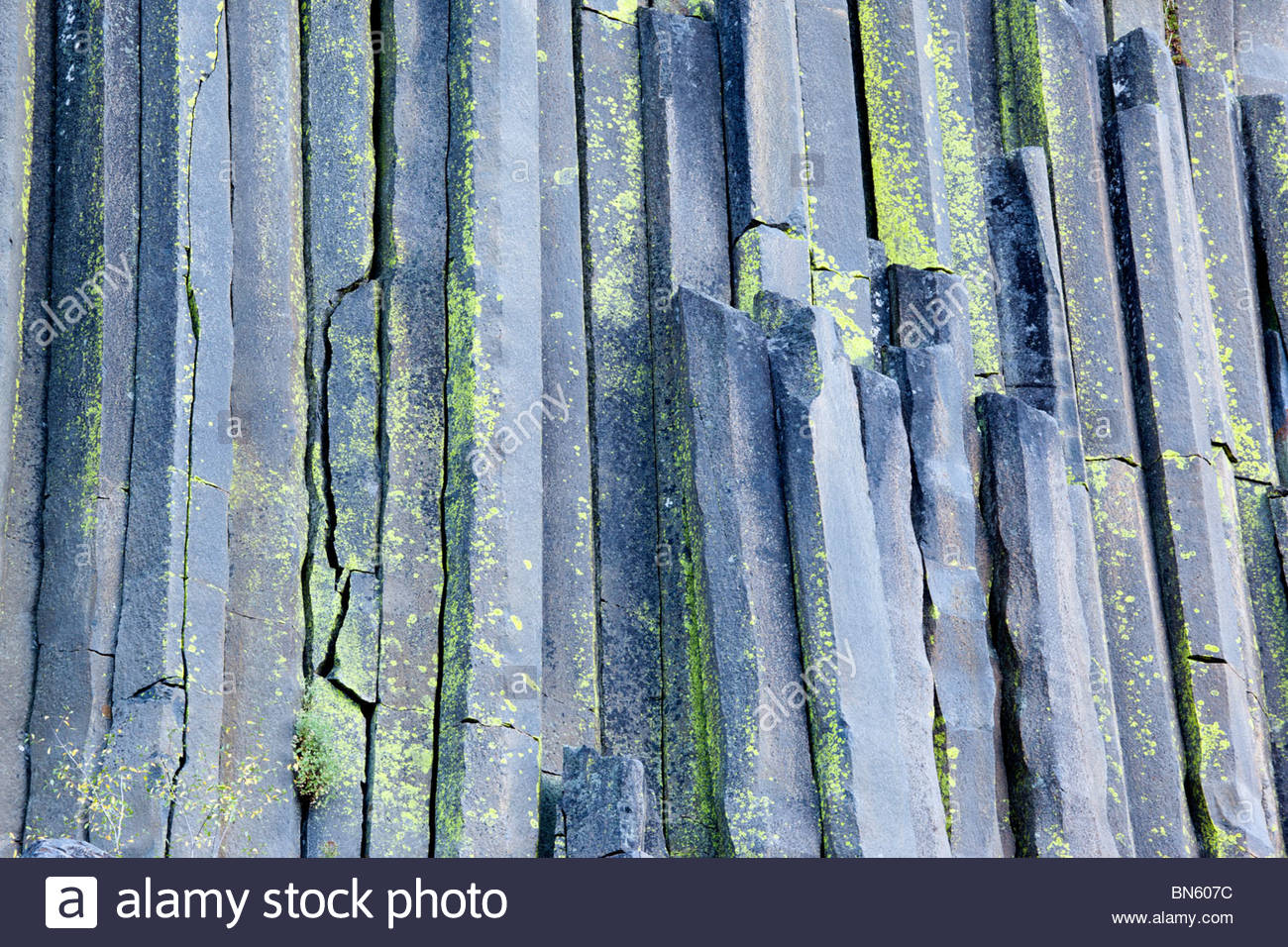 Basalt Columns, Devils Postpile National Monument, California - Stock Image