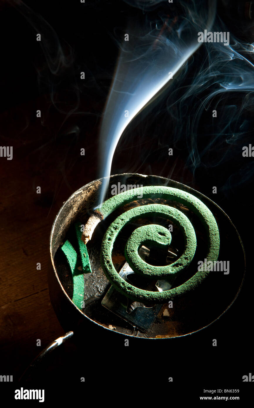 mosquito coil - Stock Image