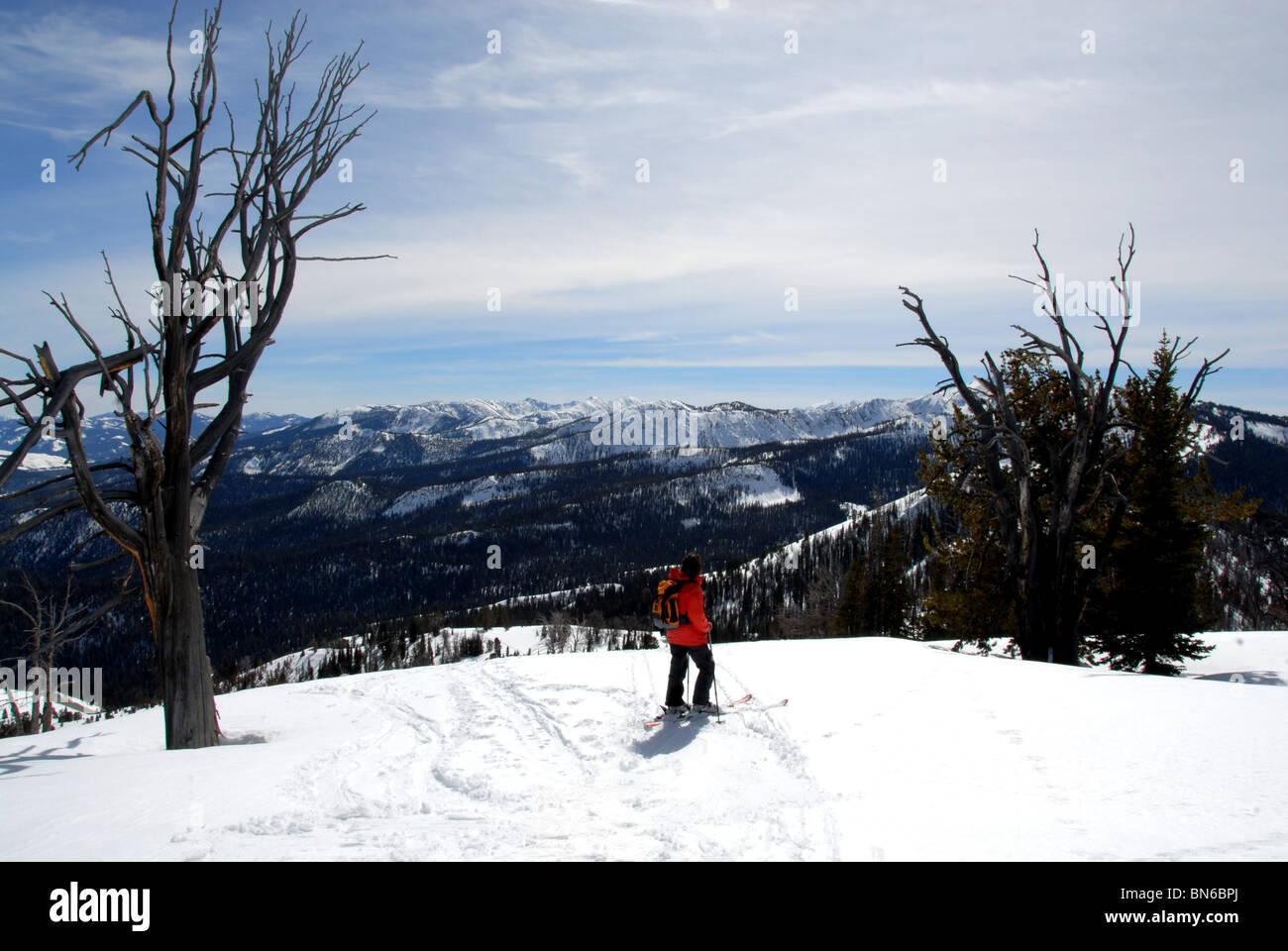 Skier on summit of unnamed mountain above Galena Pass, Sun Valley, Idaho. - Stock Image