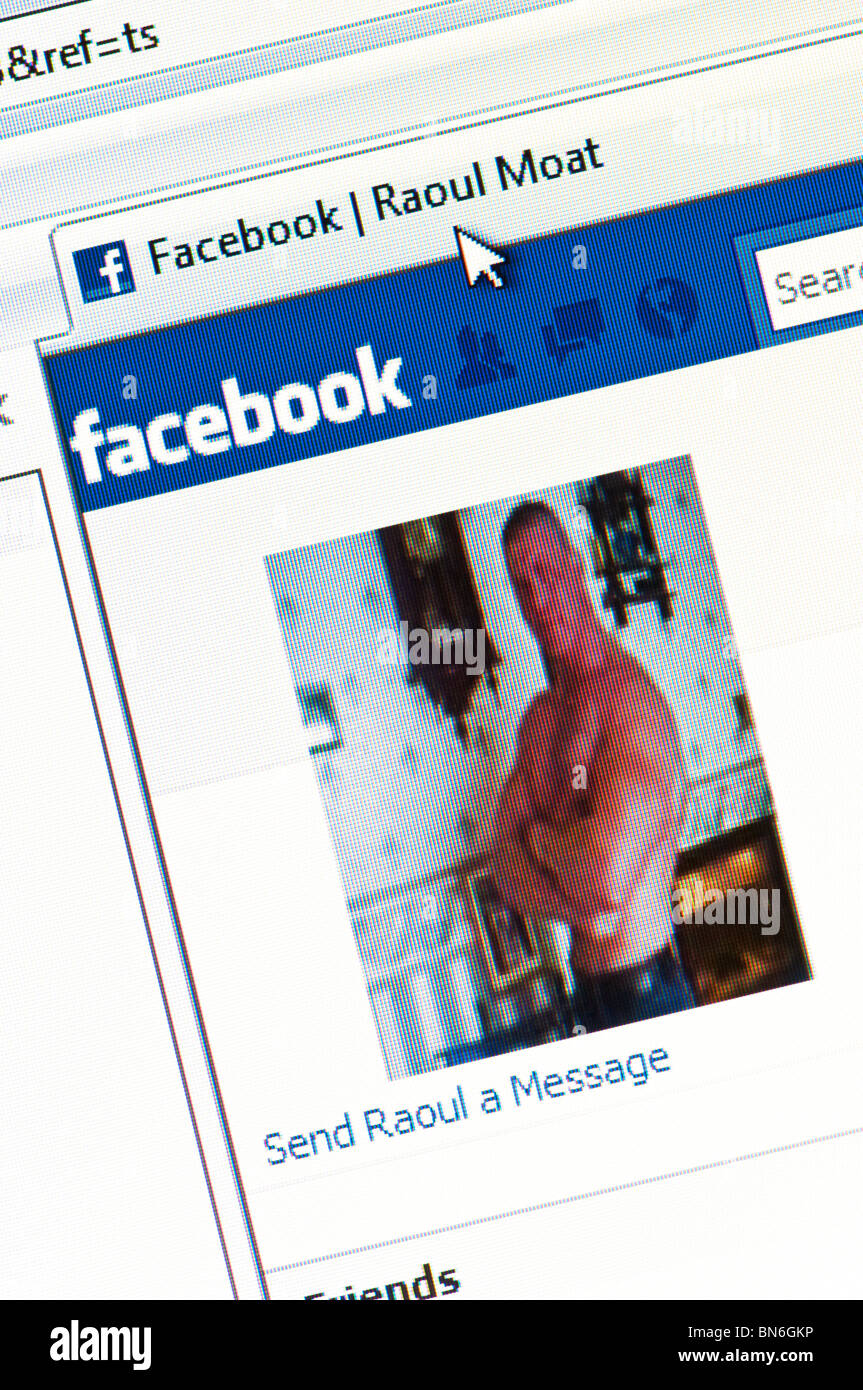 Facebook page of alleged killer Raoul Moat - Britain's most wanted man until his death in a showdown with police - Stock Image