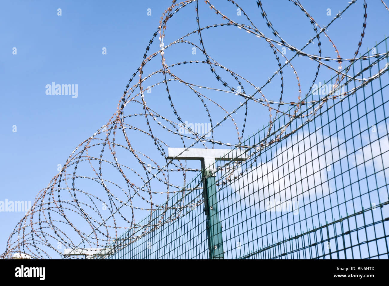 Razor wire topping a wire fence. Stock Photo