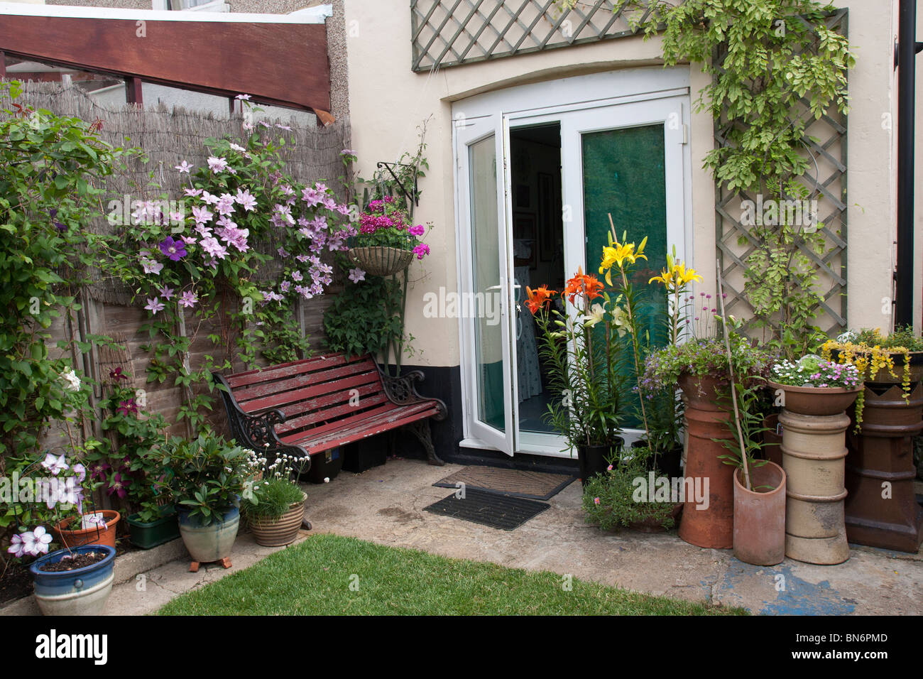 Rear of Suburban terraced house with clematis on fence and flower pots Stock Photo