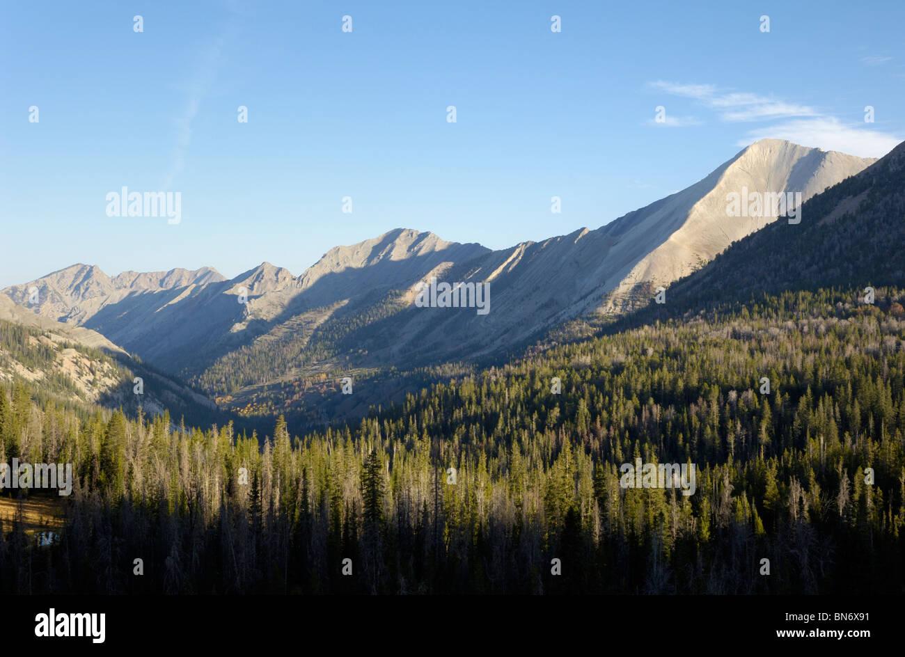 Ants Basin, White Cloud Mountains, Rocky Mountains, Idaho, USA - Stock Image