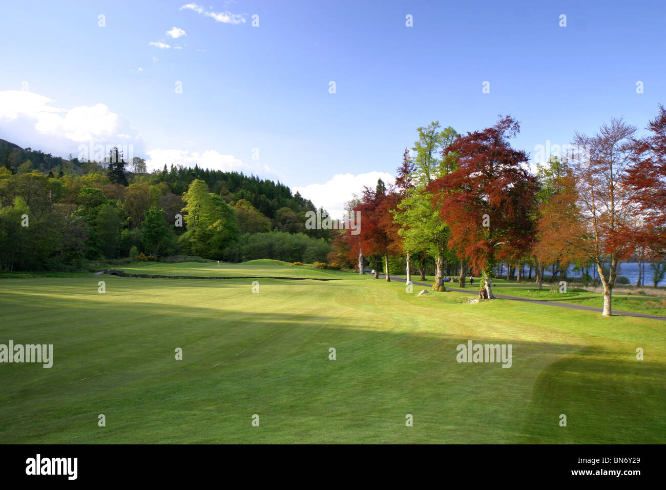 Loch Lomond Golf Course, Glasgow, Scotland. Hole 16 fairway with trees. - Stock Image