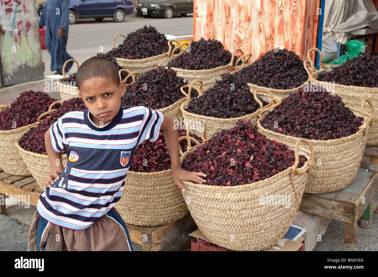 A young egyptian nubian boy by his herb stall selling dried hibiscus flowers, the spice market, Aswan, Upper Egypt - Stock Image