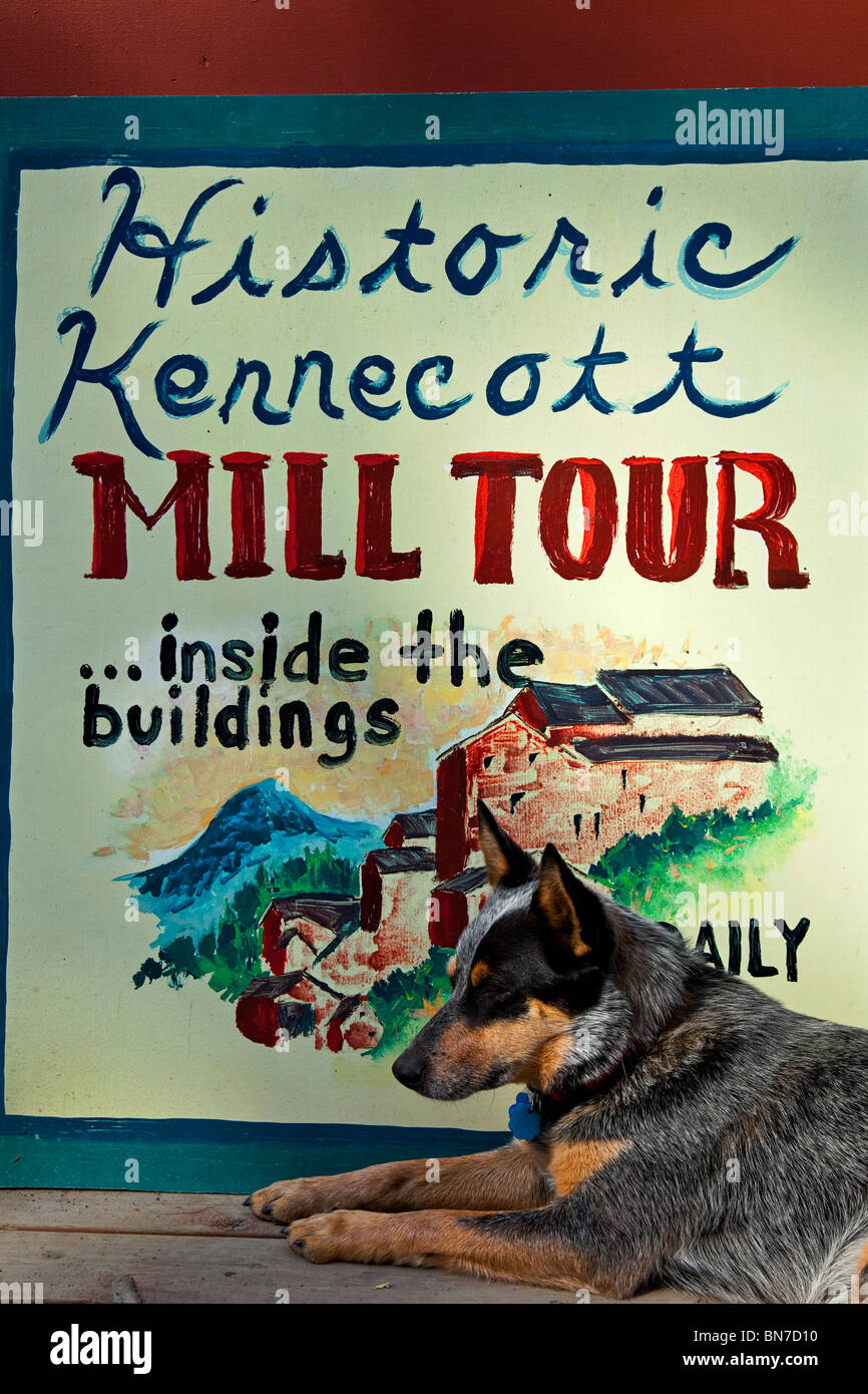 A pet dog lying in front of the Kennecott Mill tour sign at Saint Elias Alpine Guides, Wrangell-St. Elias National - Stock Image