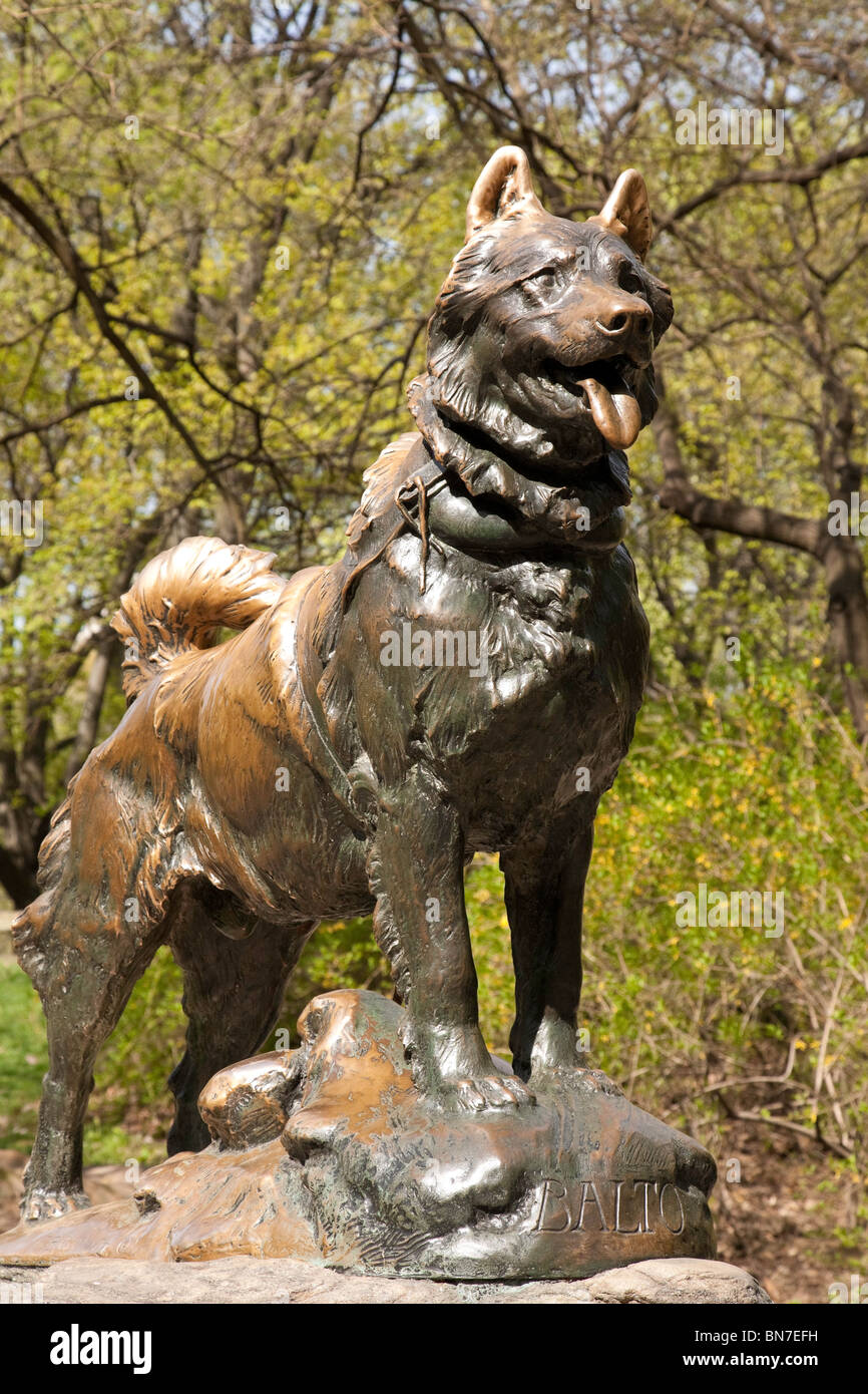 Dog Park Manhattan Nyc