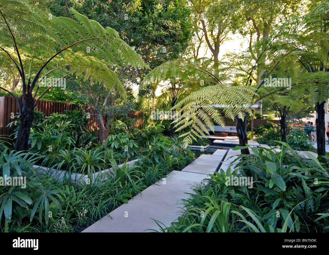 A Creation Of A Tropical Exotic Rainforest Garden With Water