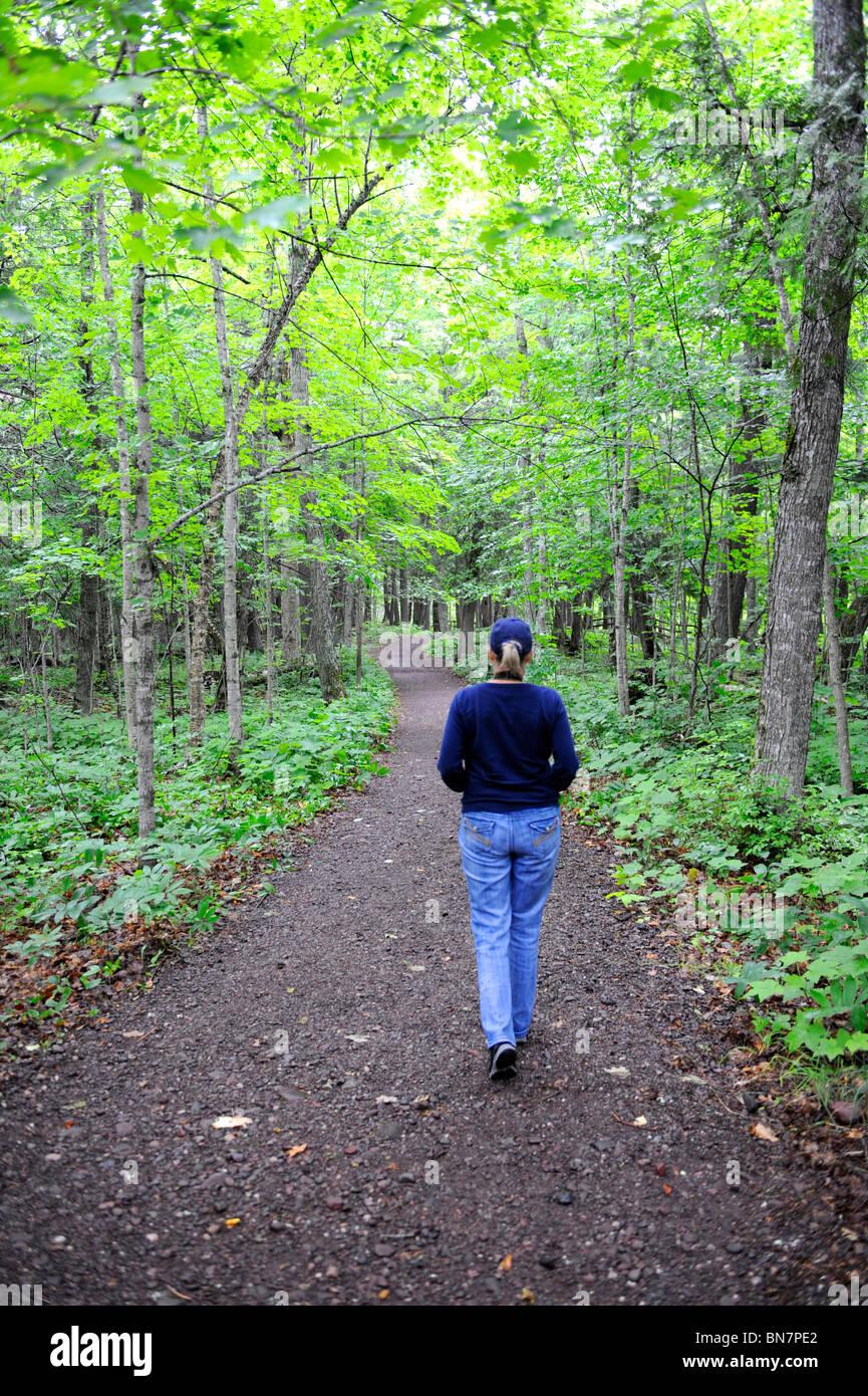 Ottawa National Forest Upper Peninsula Michigan Stock Photo