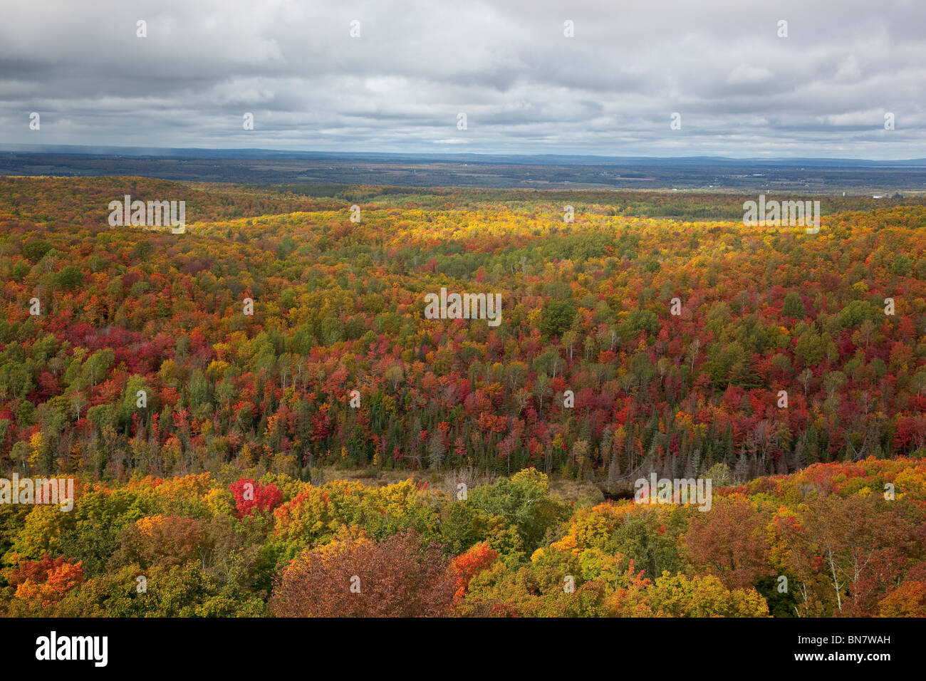 View from St. Peter's Dome at 1600 ft, the summit of Chequamegon National Forest, WI - Stock Image