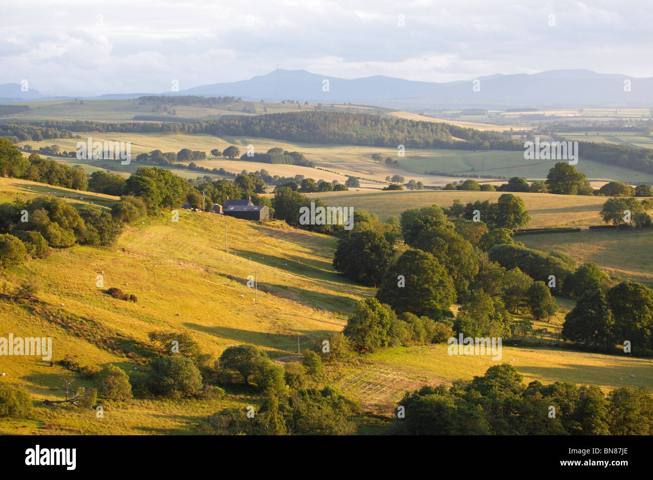 The Eden Valley in Cumbria, near Ainstable looking towards The Lake District on a summers evening. - Stock Image