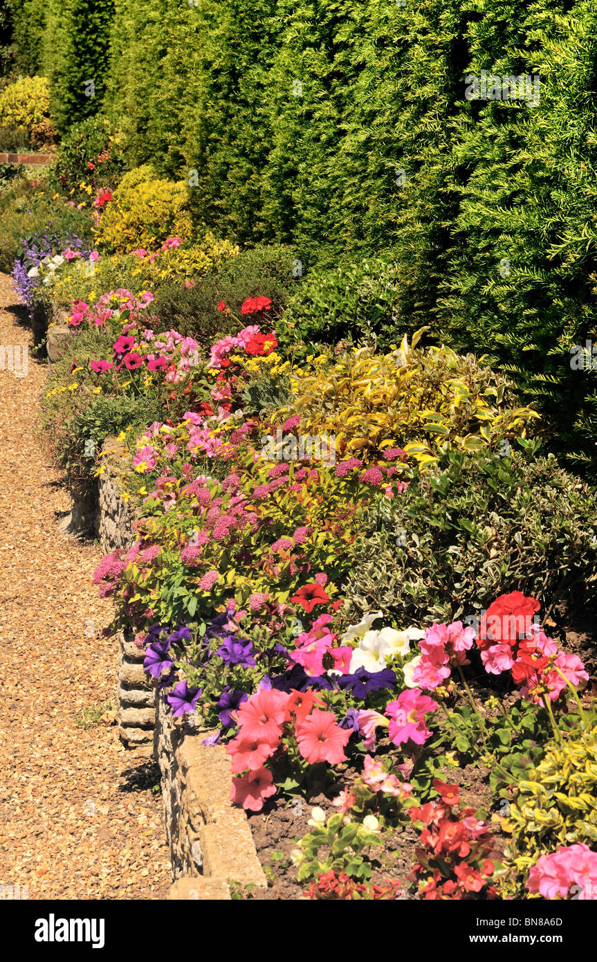 Summer flowering border in an English garden - Stock Image