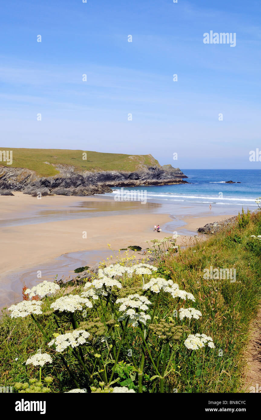 the secluded beach at porth joke near newquay, cornwall, uk - Stock Image