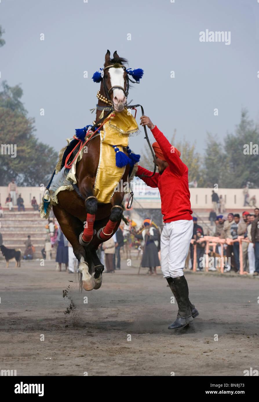 Muktsar India Maghi Mela  Punjab Horse Dance Fair Stock Photo