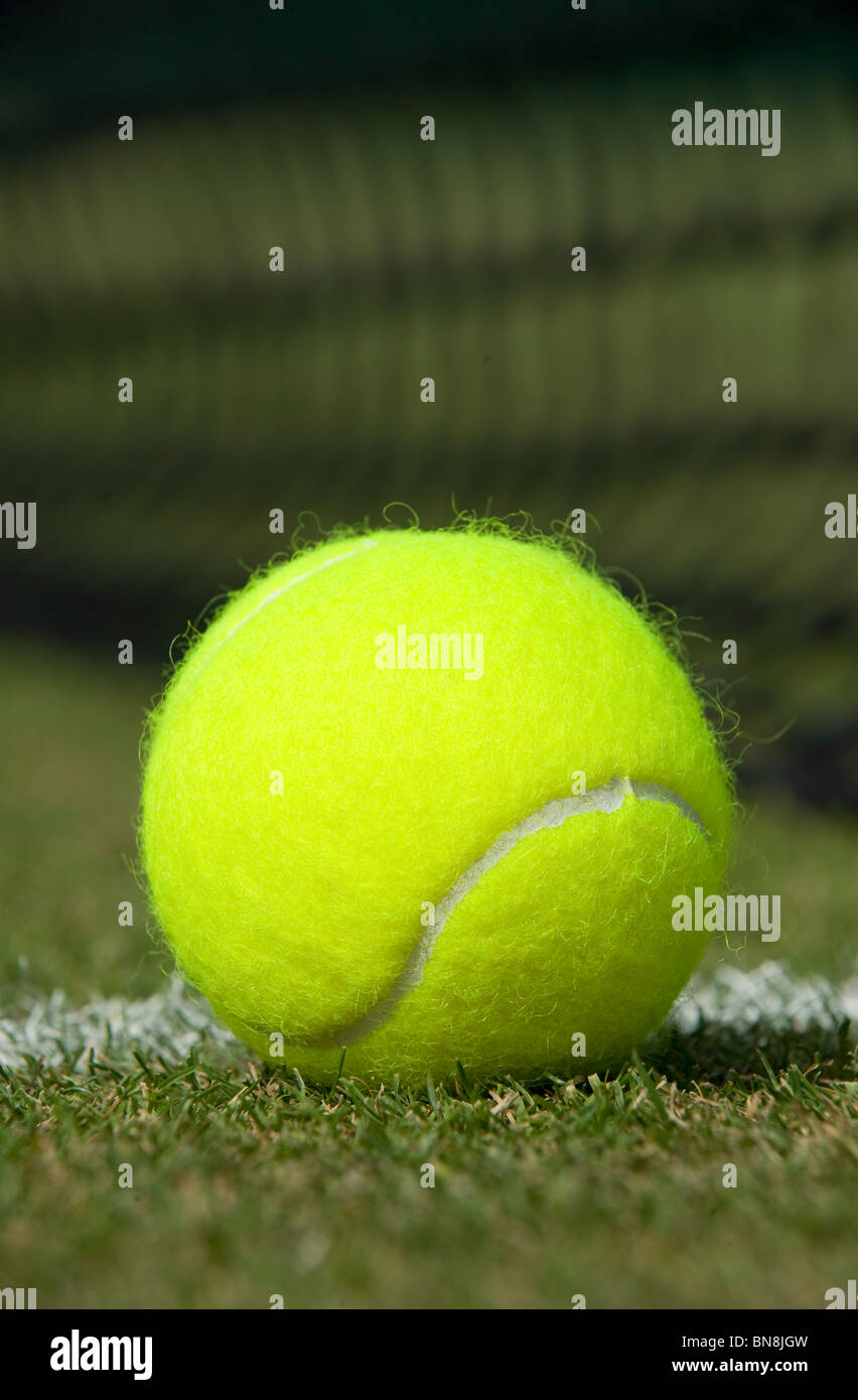A tennis ball sits on a grass court - Stock Image
