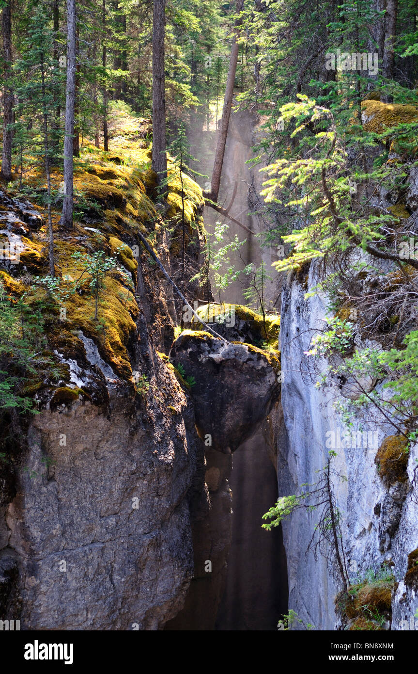 Sunlight and water vapor at Maligne Canyon. Jasper National Park, Alberta, Canada. - Stock Image