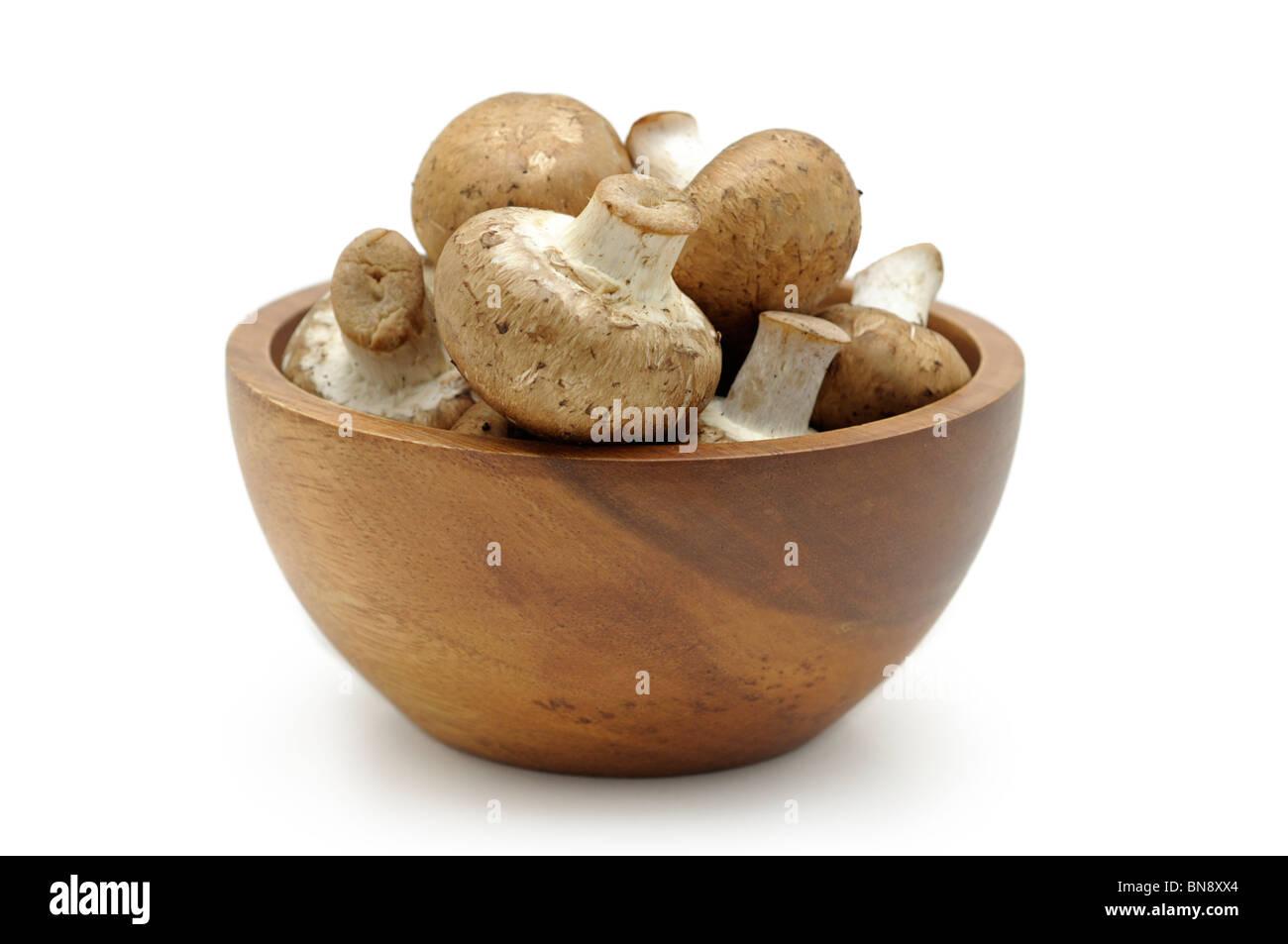 Mushrooms in Bowl - Stock Image