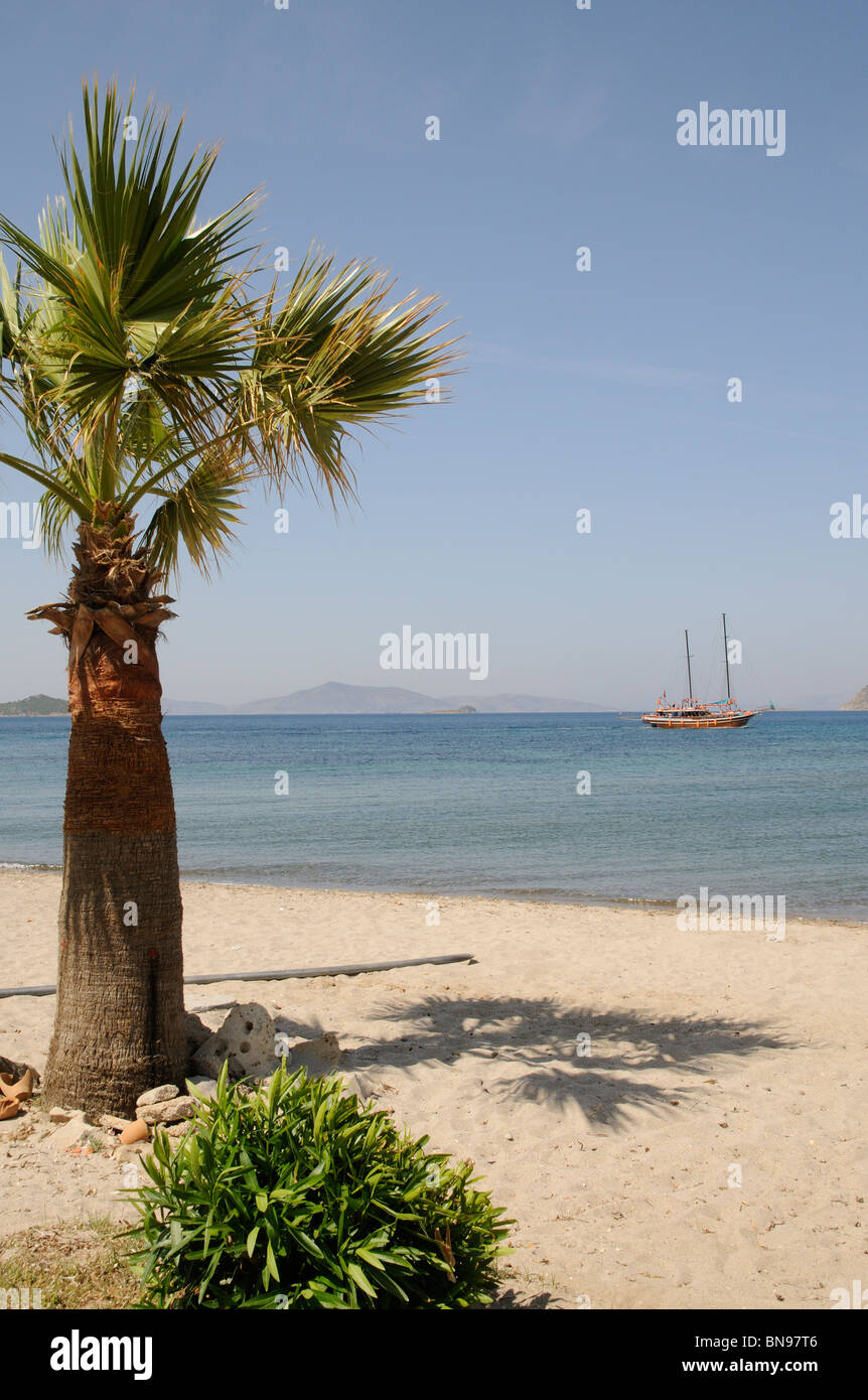 Resorts in Turkey with a sandy beach. Holidays in Turkey. Reviews 49