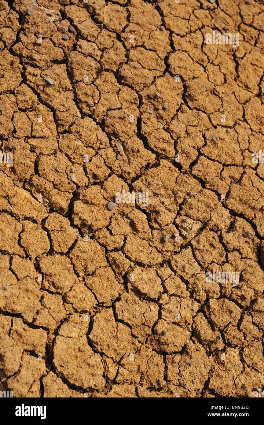 Cracked dry ground texture - background Stock Photo