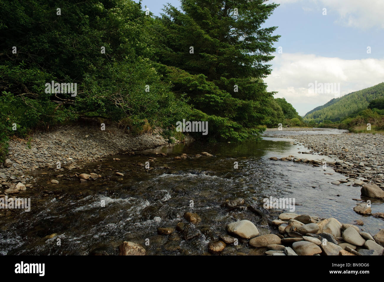 The Grogwynion SSSI (Site of special scientific interest) on the river Ystwyth, inland from Aberystwyth, Ceredigion, - Stock Image