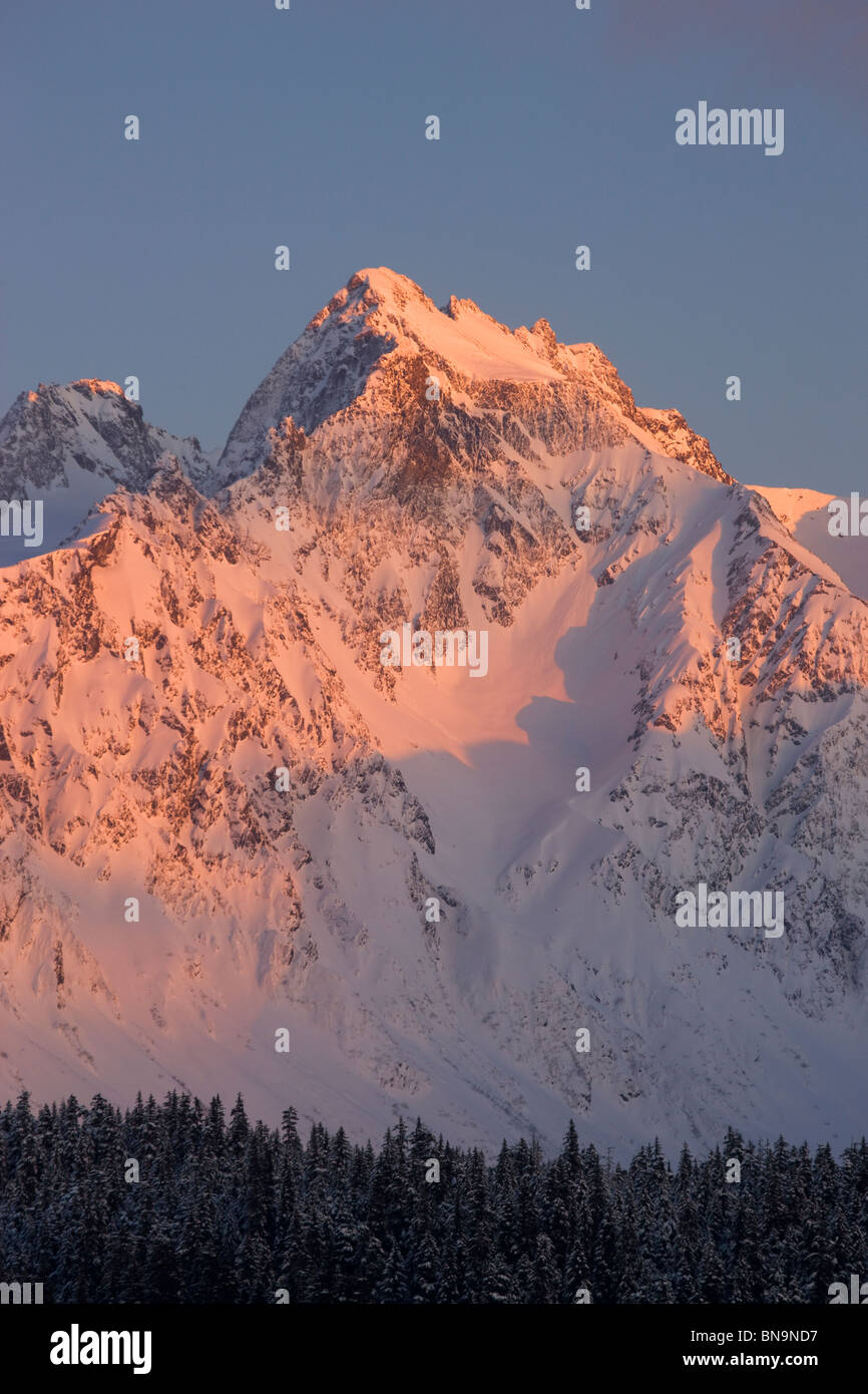 Winter in the Chugach National Forest, Seward, Alaska. - Stock Image