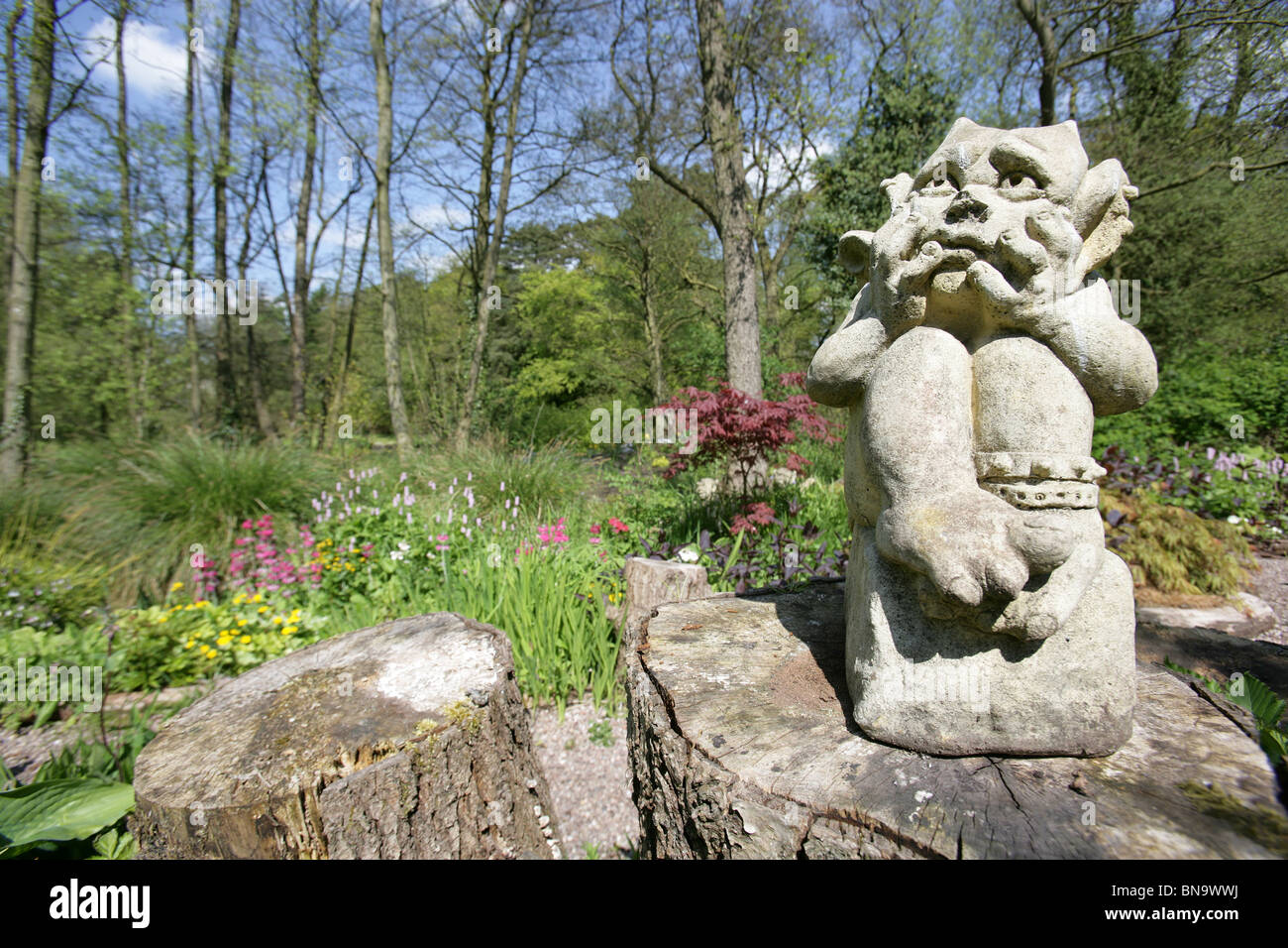 Stonyford Cottage Gardens, England. Spring View Of Stonyford Cottage Gardens  With A Garden Gargoyle In The Foreground.