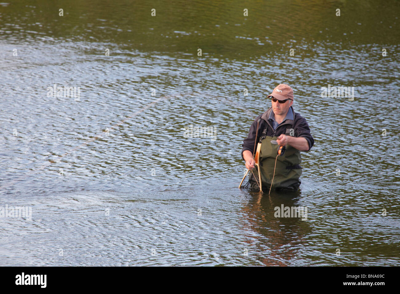 Fly Fisherman wading in the River Eden fishing for Sea Trout near Carlisle, Cumbria, England, United Kingdom. - Stock Image