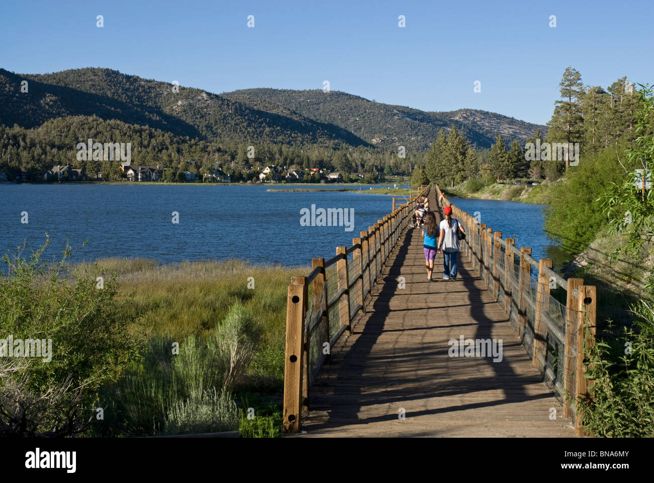 The boardwalk at Stanfield Marsh Waterfowl Preserve, Big Bear Lake, California, USA - Stock Image
