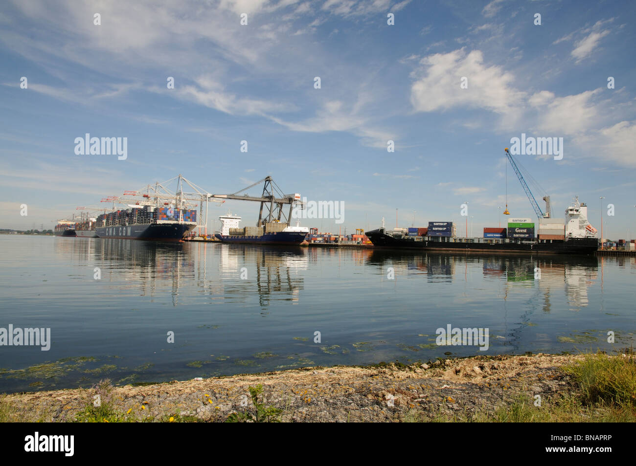 Ships on the quayside at DP World ABP Southampton England UK A large port in southern England - Stock Image