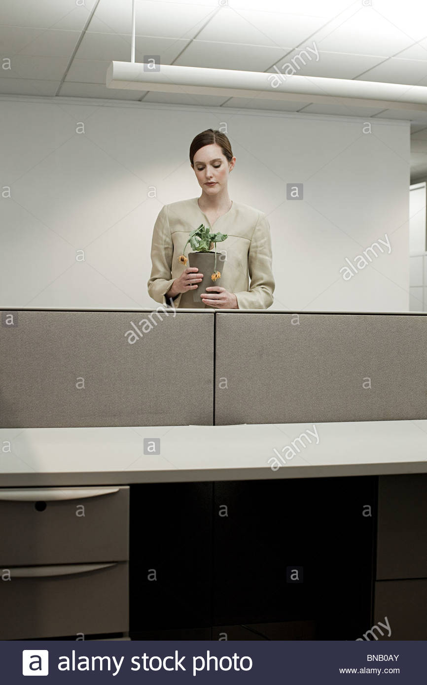Businesswoman in office with pot plant - Stock Image