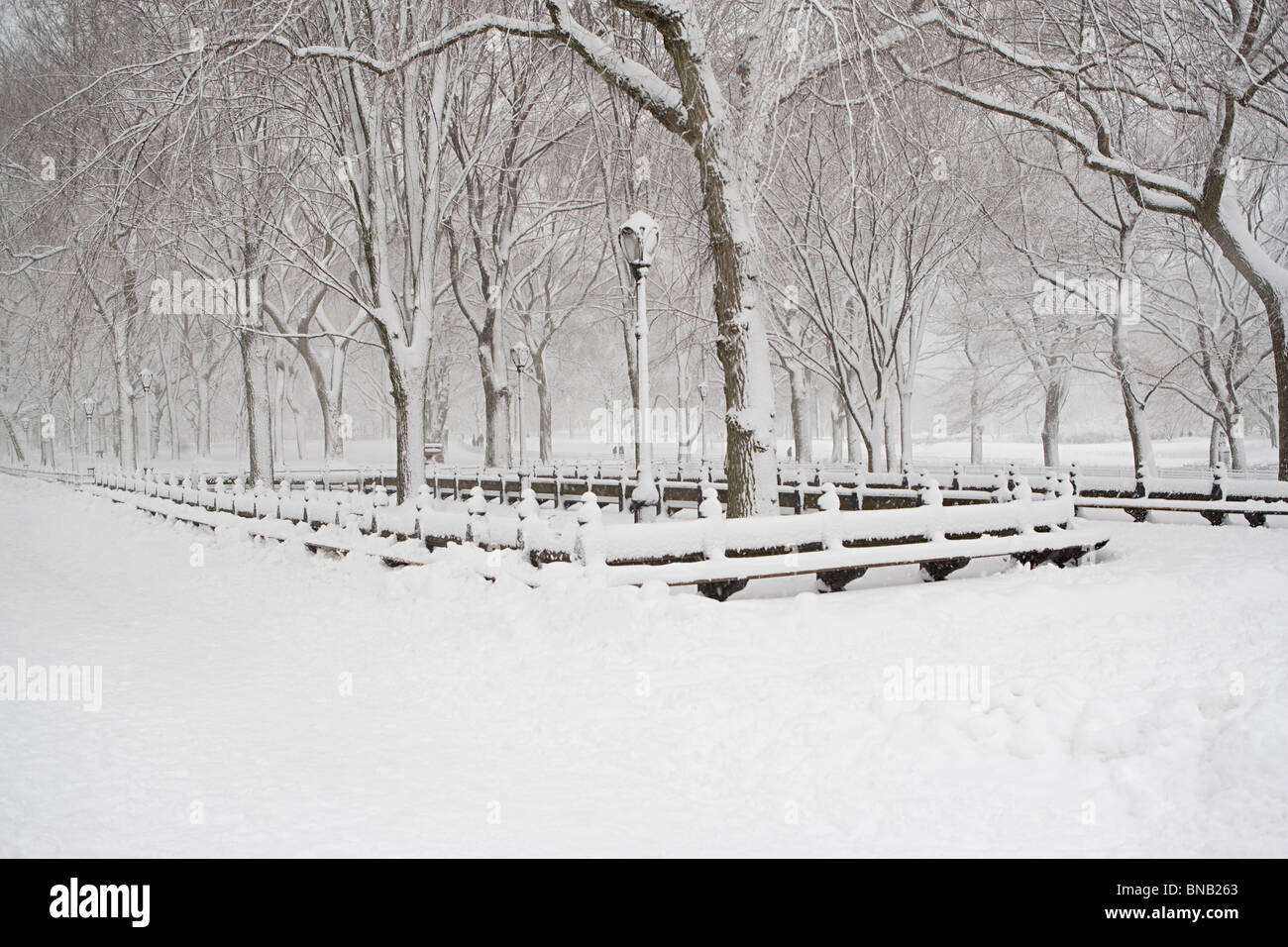 Park covered in snow - Stock Image